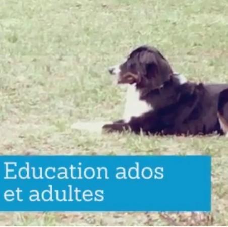 education_ados_et_adultes