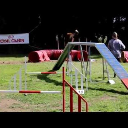 video_agility_groupe_master